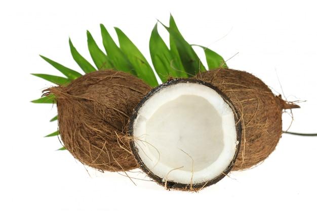 Noce di cocco. mezzo cocco fresco e una foglia di palma isolato su uno sfondo bianco.