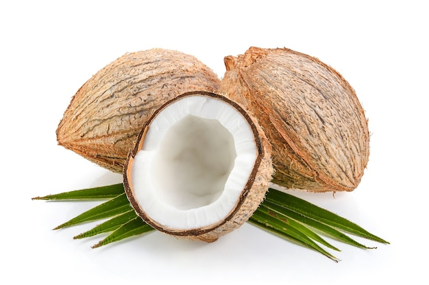 Noci di cocco con foglia isolato su sfondo bianco