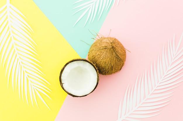 Noci di cocco con foglie di palma sul tavolo luminoso
