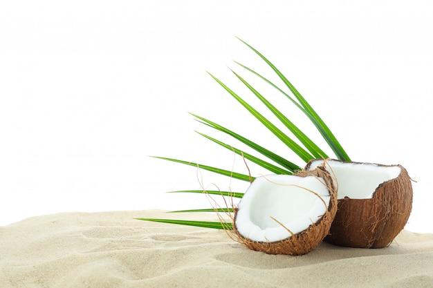 Noci di cocco e foglia di palma su chiara sabbia di mare isolata su fondo bianco. vacanze estive