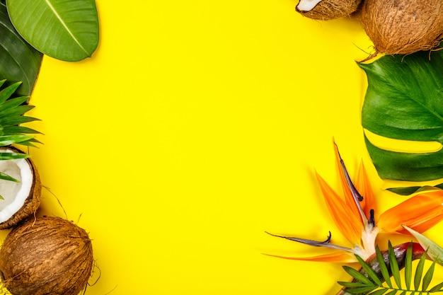 Noci di cocco e foglie tropicali, vista dall'alto, fondo del copyspace