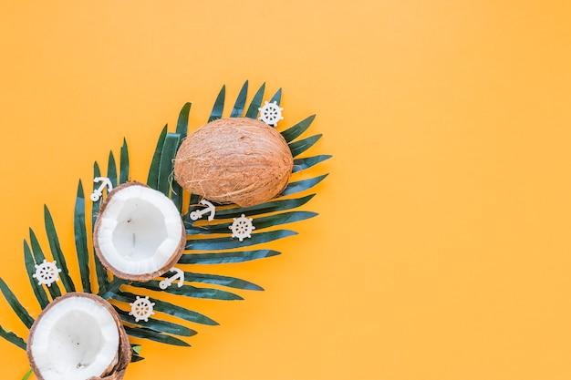 Noci di cocco su grande foglia di palma verde