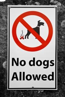 Non sono ammessi cani segno bianco
