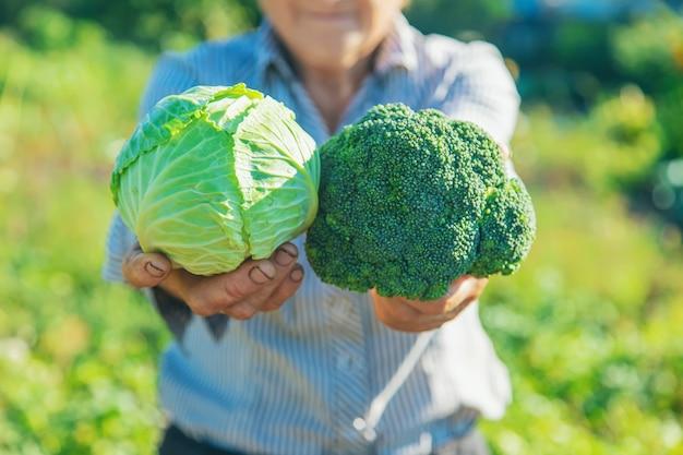 Nonna con cavolo e broccoli in mano. messa a fuoco selettiva.