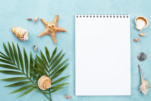 Notebook con vista dall'alto con gusci a lato