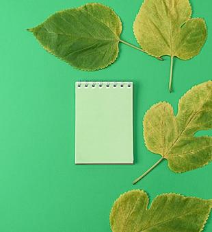 Notebook su uno sfondo verde