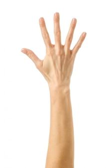 Numero cinque. gesturing della mano della donna isolato su bianco
