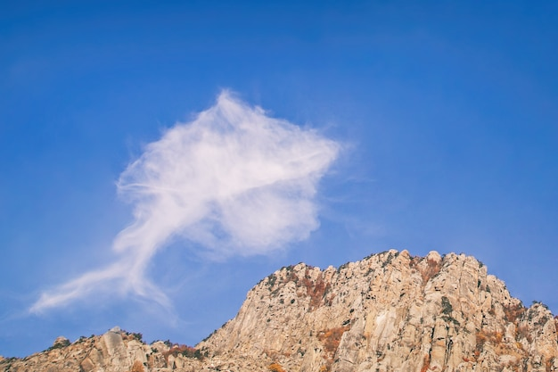 Nuvola bianca come la neve nel cielo a forma di grande balena, una creatura nuvola di fantasia nel cielo