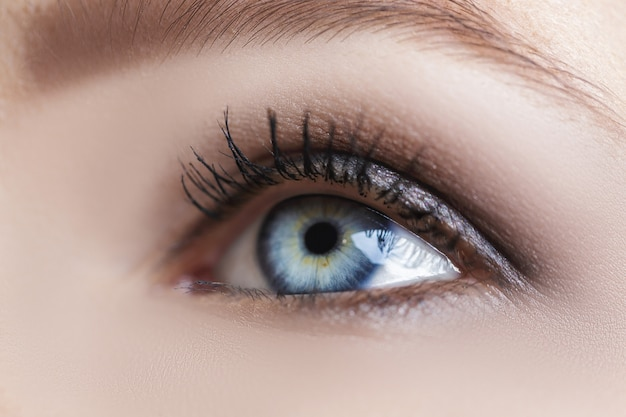 Occhio di donna blu con belle tonalità marroni