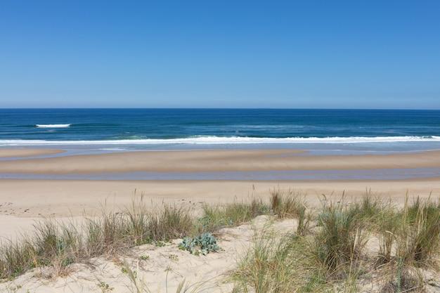 Oceano atlantico francese di vista delle dune di sabbia della spiaggia