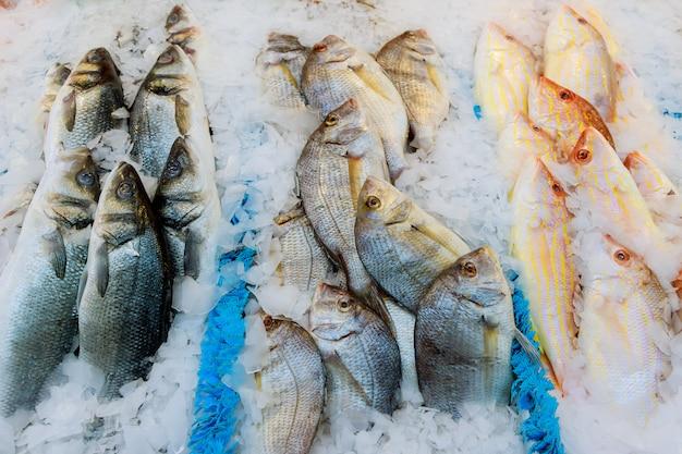 Offerta di pesce fresco refrigerato con ghiaccio tritato in una zona di pesca