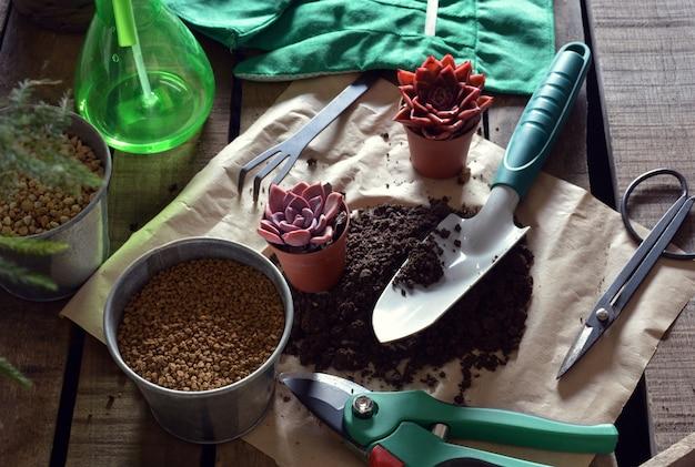 Oggetti di giardinaggio e piante sul tavolo rustico