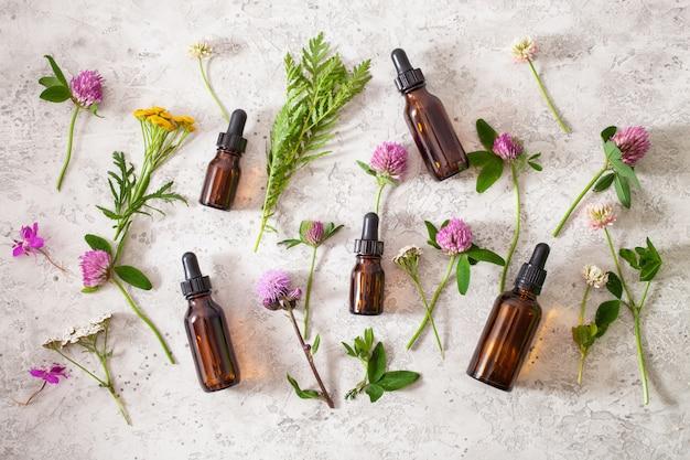 Oli essenziali medici delle erbe dei fiori in bottiglie. medicina alternativa. trifoglio millefoglie tanaceto rosebay