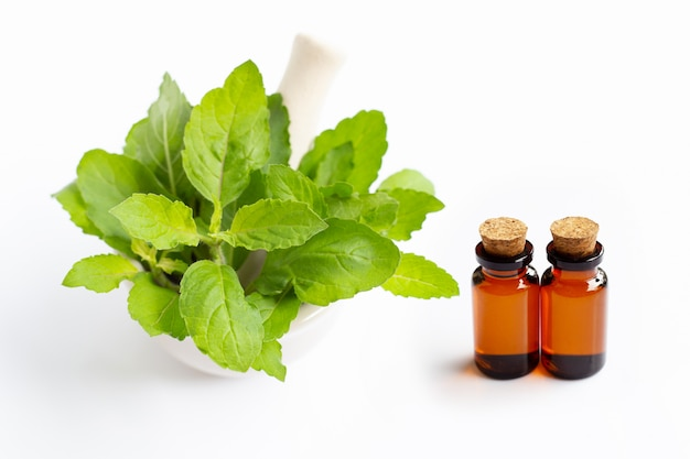 Olio essenziale con foglie di basilico santo in mortaio di porcellana su bianco