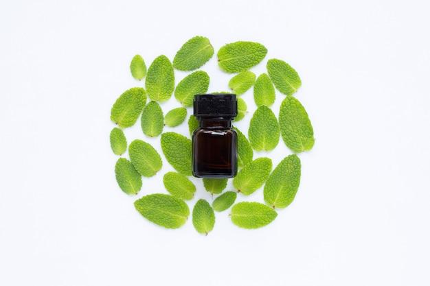 Olio essenziale con foglie di menta fresca di mela su bianco