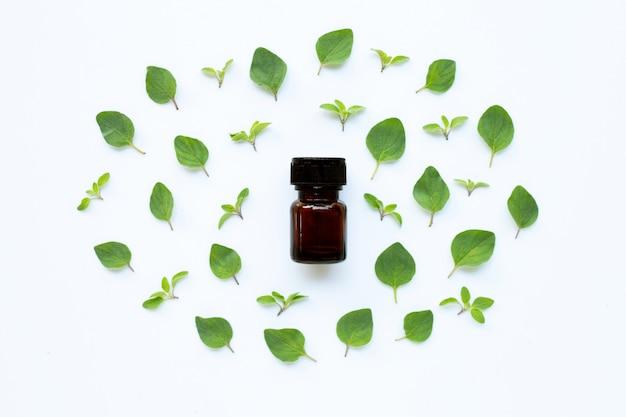 Olio essenziale con foglie di origano fresco su bianco.