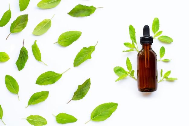 Olio essenziale con foglie fresche di basilico santo su bianco