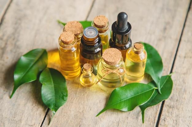 Olio essenziale dell'albero del tè in una bottiglietta. messa a fuoco selettiva.