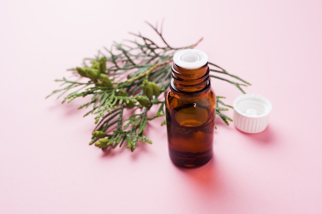 Olio essenziale di aroma di thuja in un barattolo di vetro su una superficie rosa