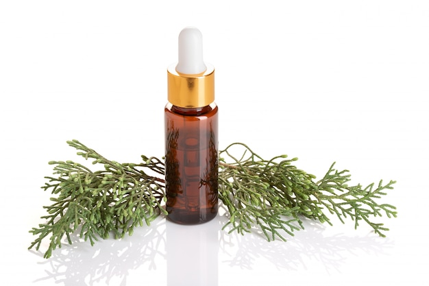 Olio essenziale di cipresso isolato. olio di cipresso su bottiglia per bellezza, cura della pelle, benessere. medicina alternativa
