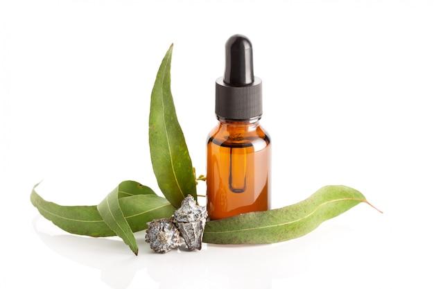 Olio essenziale di eucalipto isolato