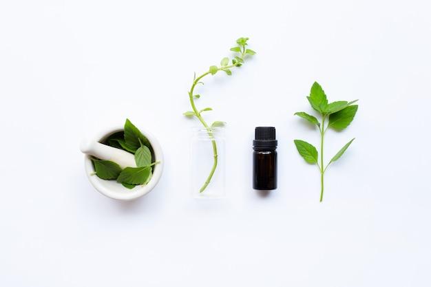 Olio essenziale di menta in una bottiglia di vetro con foglie su bianco