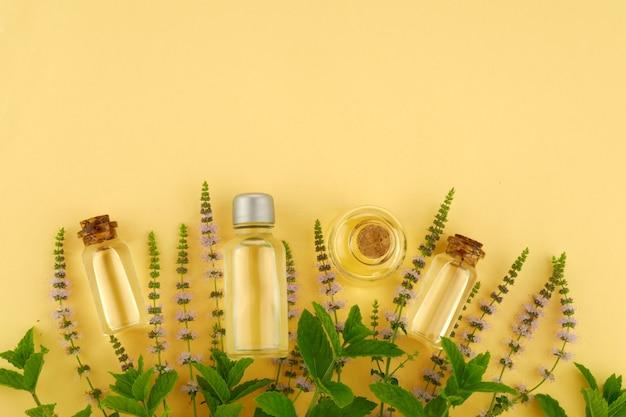 Olio essenziale di menta piperita in un set di bottiglie e rametti fioriti di menta su giallo