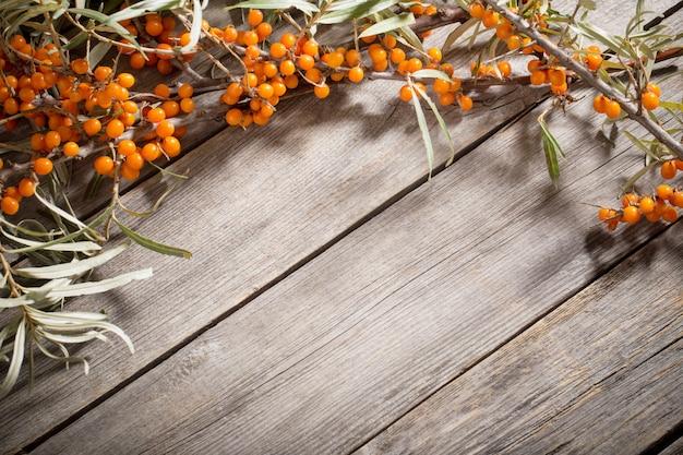 Olivello spinoso su fondo di legno