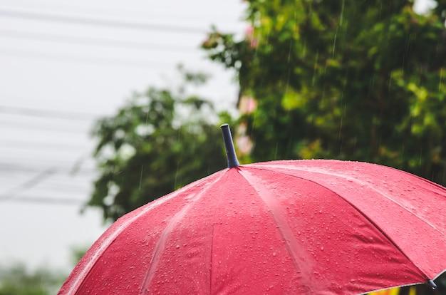 Ombrello e pioggia