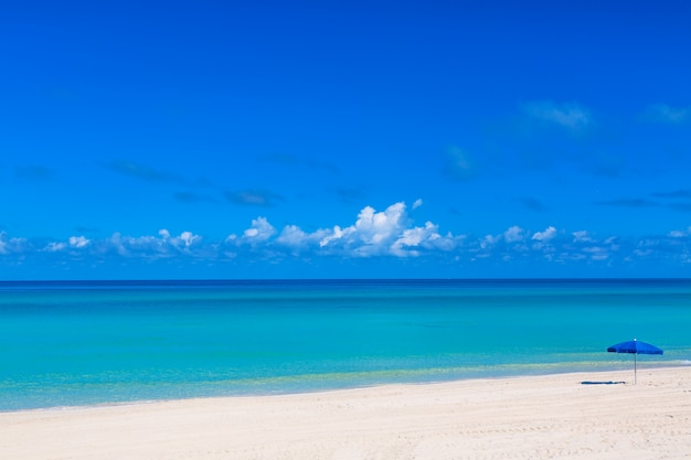 Ombrellone blu sulla spiaggia tropicale