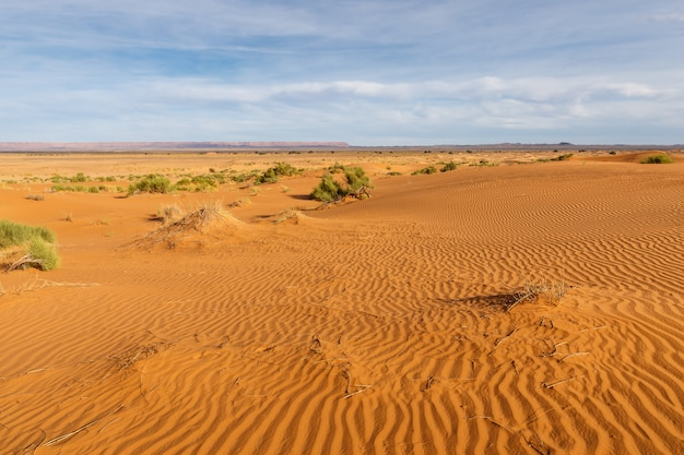Onde di sabbia nel deserto del sahara, marocco, africa