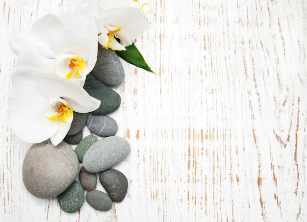 Orchidee con pietre massaggianti