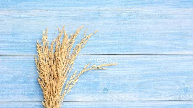 Orecchio di risaia (riso tailandese asciutto) su un tavolo di legno blu.