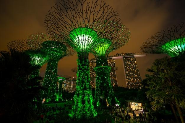 Orizzonte di notte di singapore ai giardini dalla baia