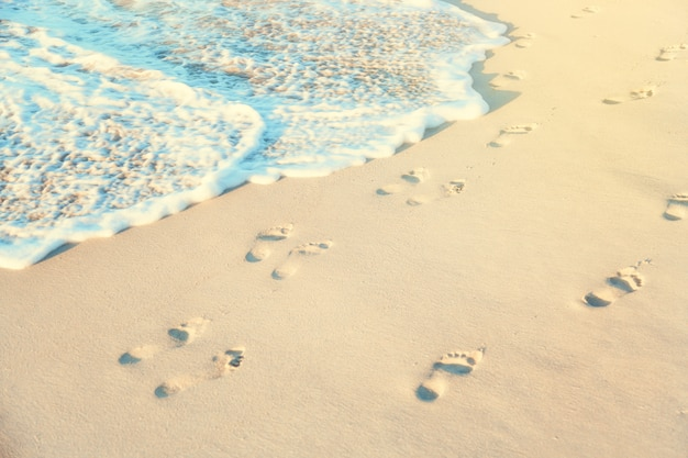 Orme su una sabbia bagnata della spiaggia con acqua di mare nel giorno soleggiato