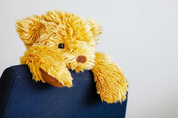 Orso morsetto per bambola sulla sedia da lavoro