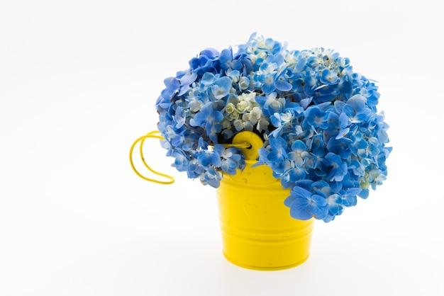 Ortensia bouquet di fiori isolato