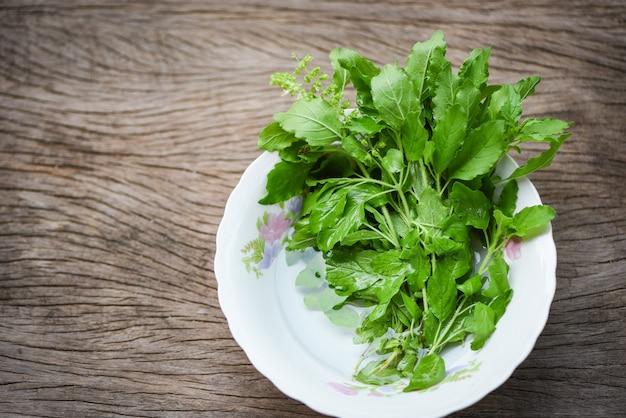 Orto santo della natura della foglia del basilico sulla ciotola e sull'erba e sull'alimento di legno della cucina della tavola - basilico dolce verde di sanctum di ocimum in tailandia