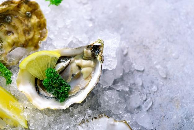 Ostriche fresche aperte, limone, erbe aromatiche, ghiaccio su pietra grigia concreta.