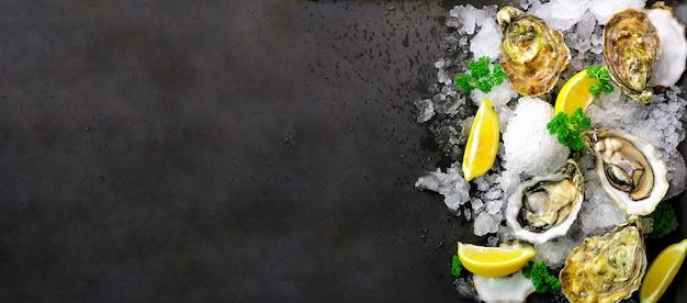 Ostriche fresche aperte, limone, erbe, ghiaccio su pietra scura.