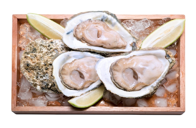 Ostriche fresche in un piatto di legno su bianco, frutti di mare in stile tailandese