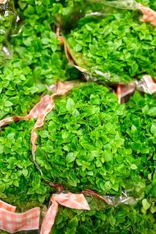 Pacchi del basilico delle piante medicinali verdi fresche in un pacchetto.
