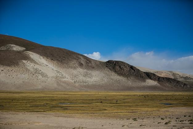 Paesaggi asciutti nella cordillera real, ande, bolivia