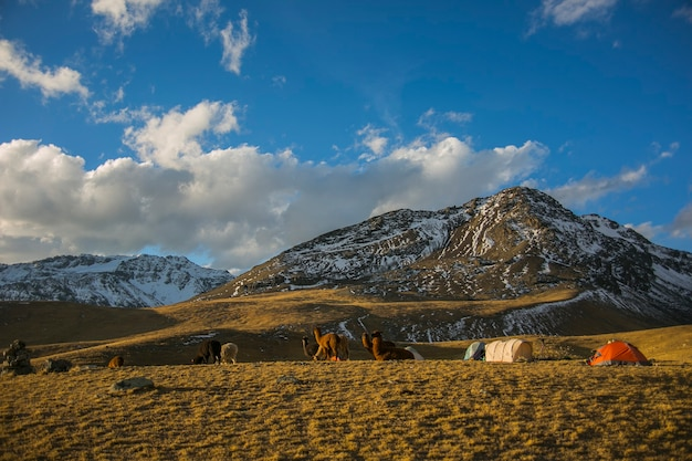 Paesaggi di montagne dalla cordillera real andes bolivia