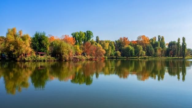 Paesaggi estivi luminosi con la riflessione degli alberi nel lago alla luce solare.