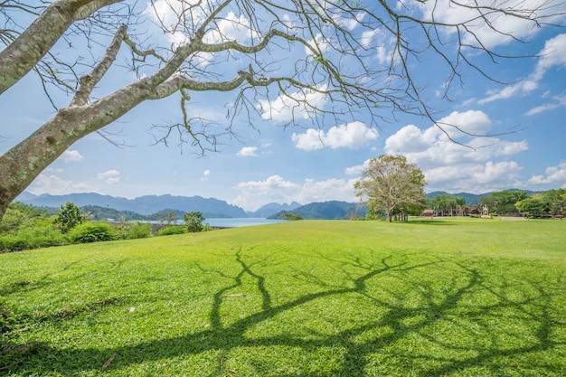 Paesaggi lawn per rilassarsi.