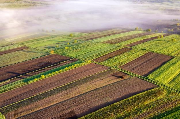 Paesaggio agricolo dall'aria sull'alba soleggiata della molla. campi verdi e marroni, nebbia mattutina.