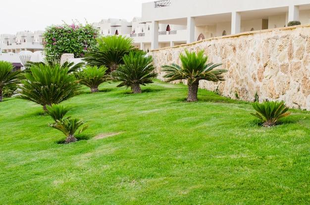 Paesaggio al territorio dell'hotel a sharm el sheikh, egitto