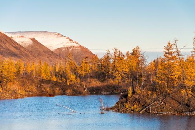 Paesaggio autunnale con lago foresta e montagne