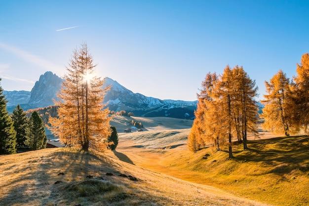 Paesaggio autunnale con montagne